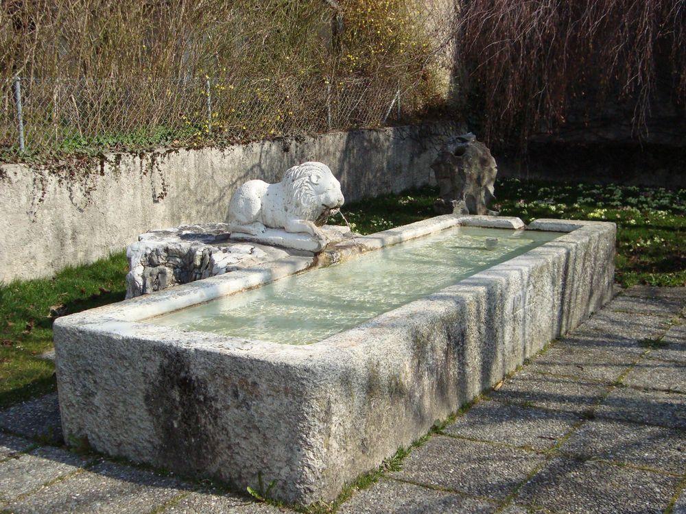 fontaine_lion
